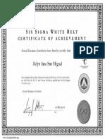 White Belt Certification