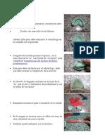 Obtención de modelos primarios.docx
