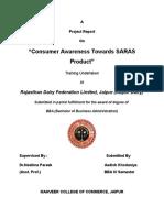 saras report AADISH.doc