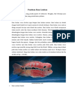 Panduan Ikan Louhan