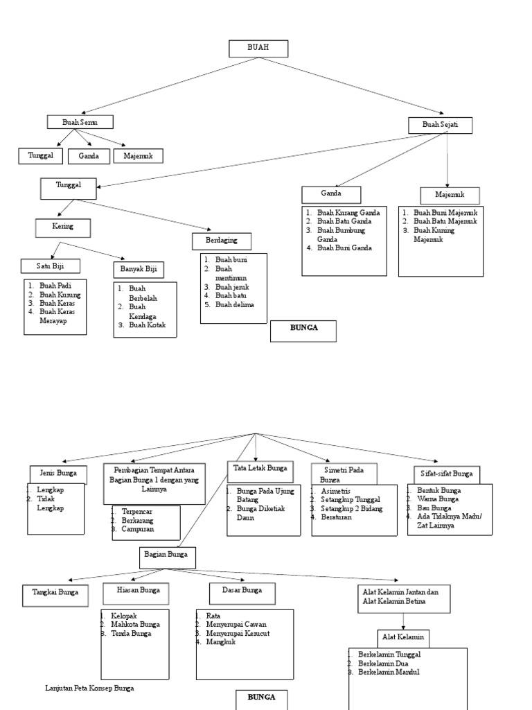 Peta konsep morfologi tumbuhan ccuart Gallery