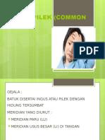 Batuk Pilek (Common Cold)