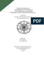 228773126-LP-LITOTRIPSI-TETRAPARESE-pdf.pdf