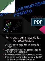 la ruta de las pentosa-fosfato