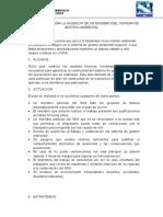 Plan de Accion Por La Ausencia de Un Miembro Del Sistema de Gestion Ambiental