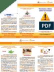 Descargas 97 Tripticos Verdades y Mitos Drogas