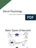 04 Nervous System Physiology