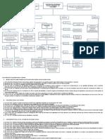 127479451-MAPA-CONCEPTUAL-SEGURIDAD-SOCIAL-INTEGRAL-doc.doc