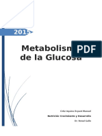 Metabolismo de La Glucosa
