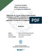 TFM_David.pdf