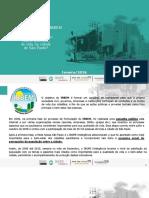 Rede Nossa Sao Paulo Fecomercio IBOPE IRBEM SP 2016