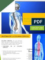 Biomecanica de La Columna Cervical y Dorsal 12 y 12