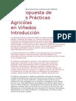 Buenas Practicas Agricolas en Viñedos