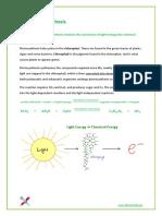3.8 - Photosynthesis.pdf