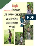 4. Metodología Científica Aplicada a La Agroforestería
