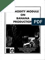 Banana Production