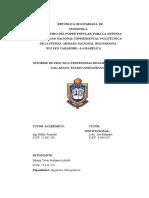 Informe de Practicas Profesionales BETANIA