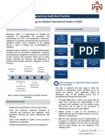 operational Audit.pdf