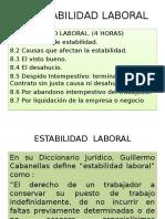 MLE. 8 Estabilidad Laboral