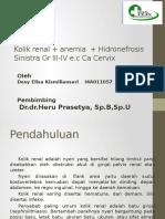 Kolik renal + anemia  + Hidronefrosis Sinistra Gr