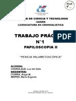 pericia papiloscopia 2