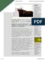 H|U|M|B|O|T 1999-2004 2 CONTENT II created by Philip Pocock 2001..pdf