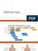 Deskripsi Luka 2