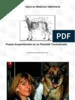 jornadaimada2002casoclnicojob-140722191101-phpapp01.ppt