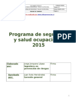 Programa o Plan Anual de Prevencion de Riesgos SSO
