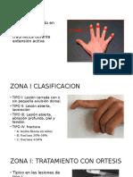 Lesiones Extensoras flexoras