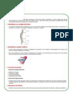 34.- Enfermedades a La Columna y Extremidades Superiores