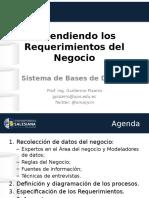 01b RequerimientosDelNegocio v1.0.0