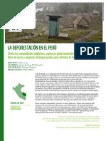 La Deforestacion en El Peru