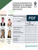 Resultados Representantes Por Los Trabajadores Copasst