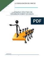 Liderazgo Efectivo en Organizaciones Sociales