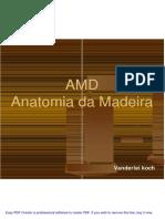 AMD_apresenta__o_1.pdf