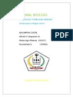 Jurnal Biologi (Artocarpus Integra Merr)