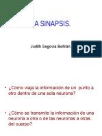 Potencial de Accion Y sinapsis