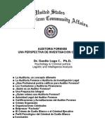 auditoria forense_dlugo.doc