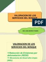 Clase 8. Valoración de los servicios del bosque-Sumideros de C.pdf