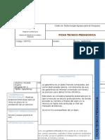 formato ficha tecnico-pedagogica blanco  doc galantinas