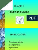 CLASE 1. Electivo.2008 (PPTminimizer)