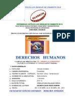 DHS Juliaca Contabilidad David Panca Fase de Evaluación y Mejora