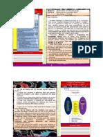 tgfirstquartergrade8english.pdf