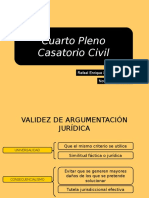 4 Pleno Casatorio Civil