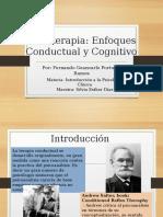 Cap 14 - Enfoque Conductual y Cognitivo