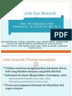 Referat jalur motorik dan sensorik