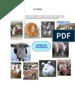 Las Carnes en La Gastronomía Peruana