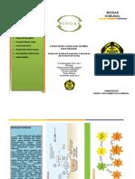 LEAFLEAT BIOGASS.pdf