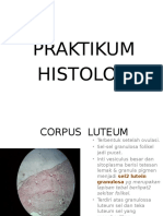 Praktikum Histologi Sistem Reproduksi - Copy